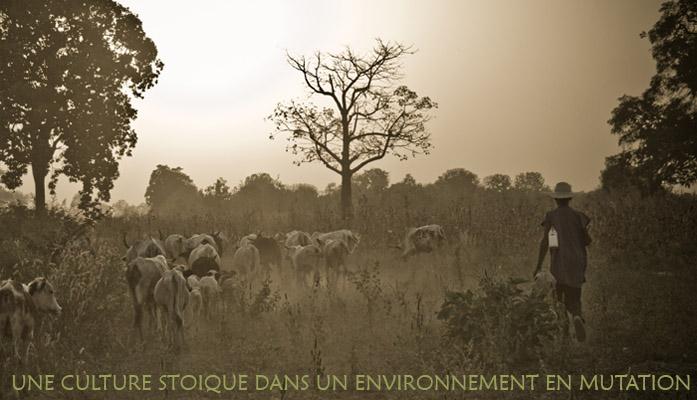 Une Culture Unique Dans Un Environnement Changeant